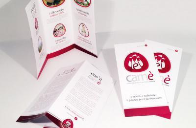 Partners | CARNÈ - Depliant